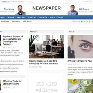 Newspaper - ThemeJunkie