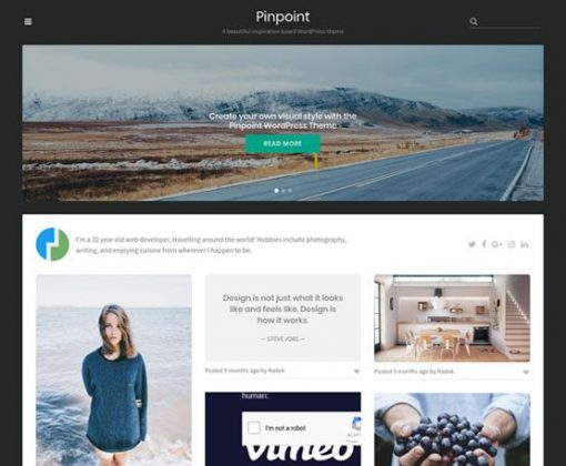 Pinpoint - ThemeJunkie