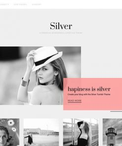 Silver - ThemeJunkie