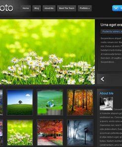 ePhoto - ElegantThemes