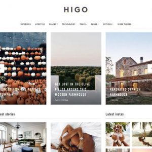 Higo - Themeforest
