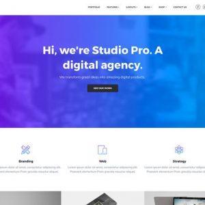 Studio Pro - StudioPress