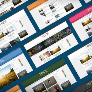Voice - themeforest
